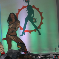 Miami Dolphins Cheerleader Runway Review